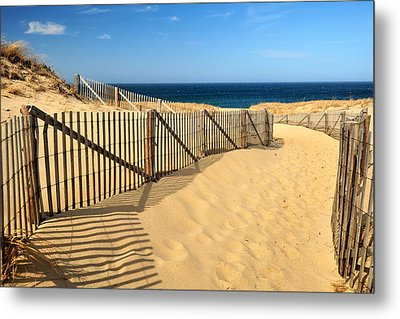 Metal Print featuring the photograph Cape Cod Beach by Mitchell R Grosky