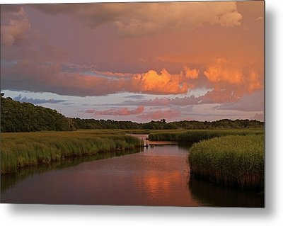 Cape Cod Bells Neck  Metal Print by Juergen Roth