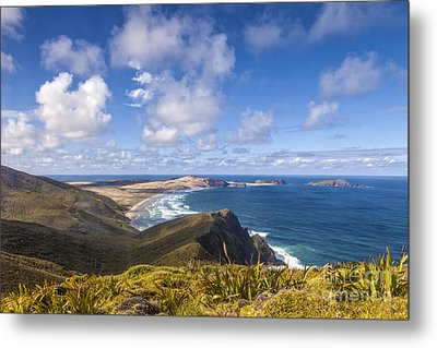Cape Maria Van Diemen Northland New Zealand Metal Print by Colin and Linda McKie