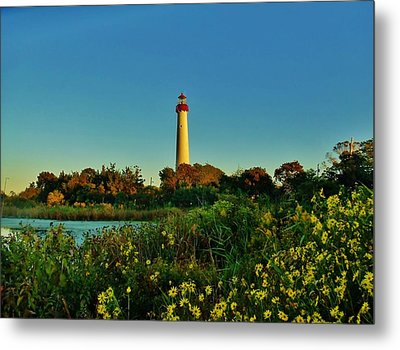 Cape May Lighthouse Above The Flowers Metal Print