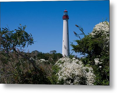Metal Print featuring the photograph Cape May Lighthouse by Greg Graham
