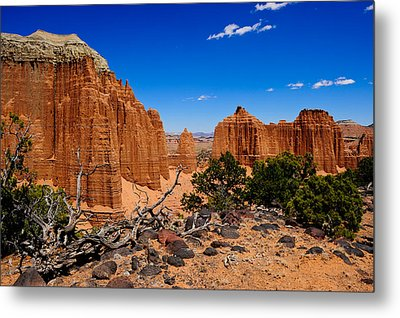 Capital Reef Metal Print by Donald Fink