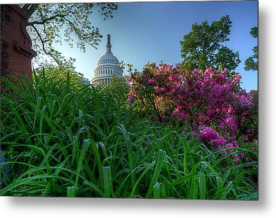 Capitol Dome Metal Print by Michael Donahue