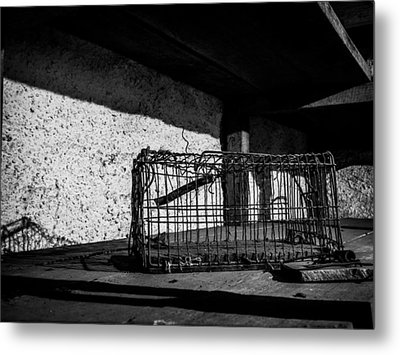 Captivity Defied Liberty Attained Metal Print