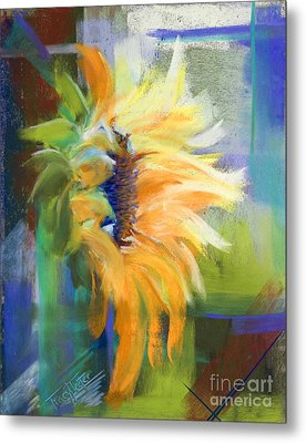 Captured Sunlight Metal Print by Tracy L Teeter