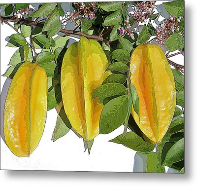 Carambolas Starfruit Three Up Metal Print by Olivia Novak