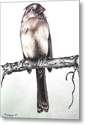 Cardinal Female Metal Print