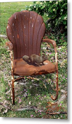 Metal Print featuring the photograph Careful Where You Sit by Doug Kreuger