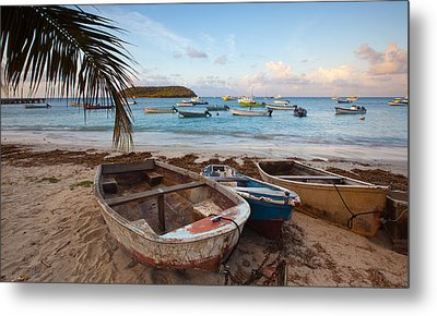 Caribbean Morning Metal Print by Patrick Downey
