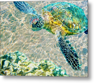 Beautiful Sea Turtle Metal Print by Jon Neidert