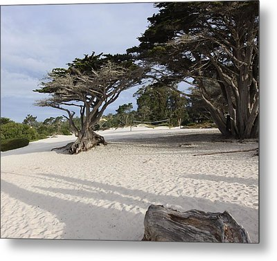 Metal Print featuring the photograph Carmel by Kandy Hurley
