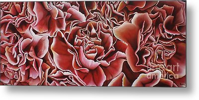Carnations Metal Print by Paula L
