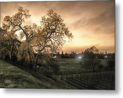 Carole's Vineyard Metal Print