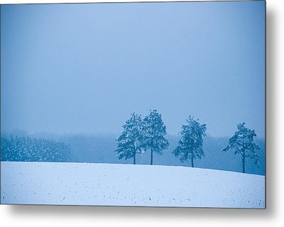 Carolina Snow Metal Print