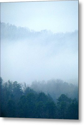 Carolina Winter Number Two Metal Print