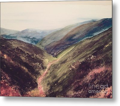 Carpathian Valleys Metal Print by Trilby Cole