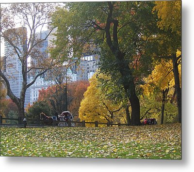 Metal Print featuring the photograph Carriage Ride Central Park In Autumn by Barbara McDevitt