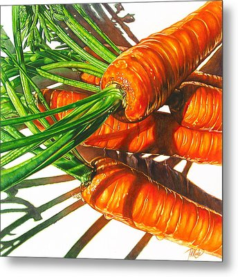 Carrot Top Shadows Metal Print by Tracy Male