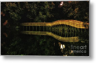 Carry Me Back In Time Metal Print by Olahs Photography