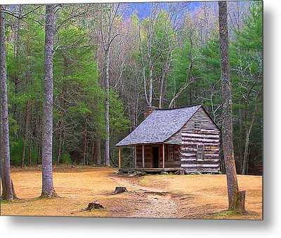 Carter Shield's Cabin II Metal Print by Jim Finch