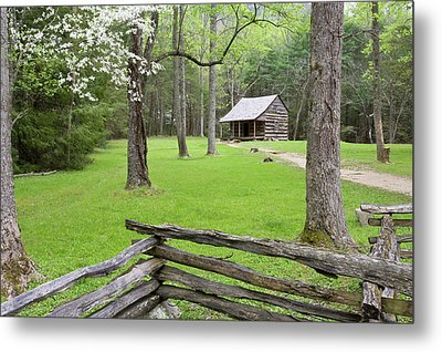 Carter Shields Cabin In Spring, Cades Metal Print by Richard and Susan Day