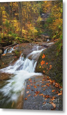 Cascade In The Glen Metal Print