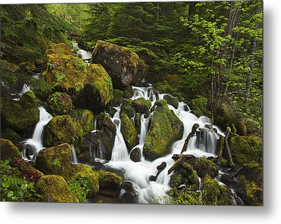 Cascades In The Woods Metal Print by Andrew Soundarajan