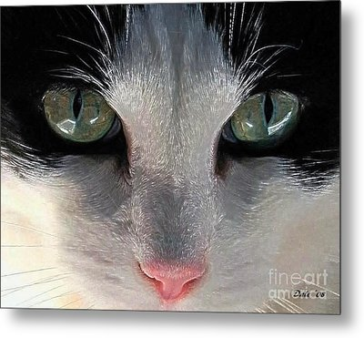 Casey Eyes Metal Print by Dale   Ford