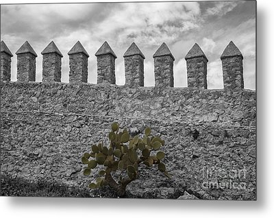 Castle Wall Metal Print