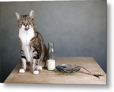 Cat And Herring Metal Print by Nailia Schwarz