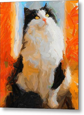 Cat Looking Up Metal Print by Yury Malkov
