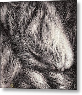 Cat Nap Metal Print by Elena Kolotusha