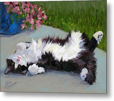 Cat On A Hot Day Metal Print by Alice Leggett