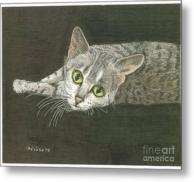 Cat On Black Metal Print