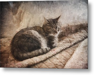 Cat On The Bed Painterly Metal Print by Carol Leigh