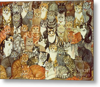 Cat Spread Metal Print by Ditz