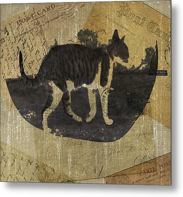 Cat Travels Metal Print