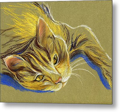 Cat With Gold Eyes Metal Print by MM Anderson