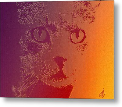 Metal Print featuring the photograph Cat With Intense Stare Abstract  by Denise Beverly