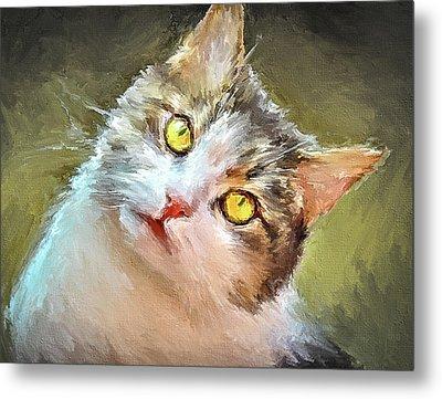 Cat Yellow Eyes Metal Print