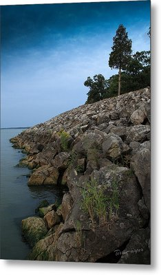 Catawba Point Shoreline Metal Print