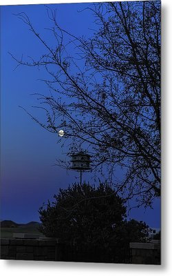 Catching Moonlight Metal Print by Nancy Marie Ricketts