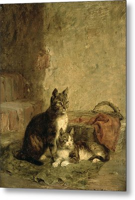 Cats, 1883 Oil On Canvas Metal Print by Julius Adam
