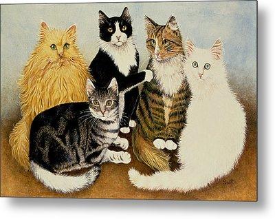 Cats Cradle Metal Print by Pat Scott