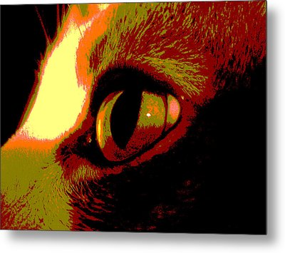 Cat's Eye Abstract  Metal Print by Ann Powell