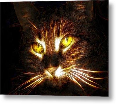 Cat's Eyes - Fractal Metal Print