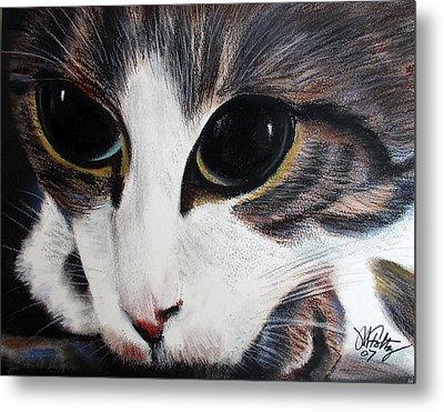 Cat's Eyes Metal Print