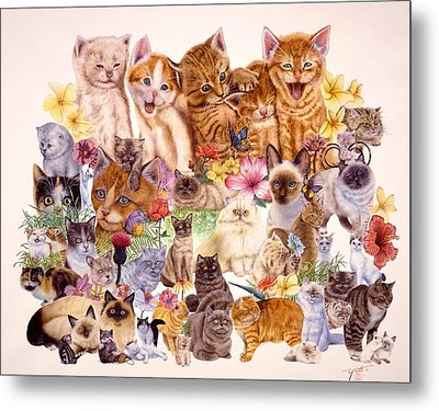 Cats Metal Print by John YATO