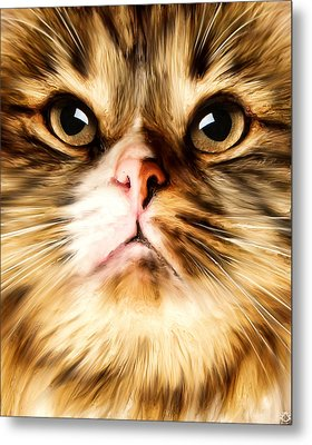 Cat's Perception Metal Print