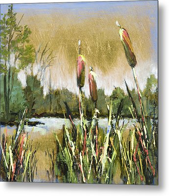 Cattails At Forest Park Metal Print by Vic  Mastis